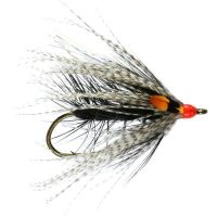 Caledonia Sea Trout Singles