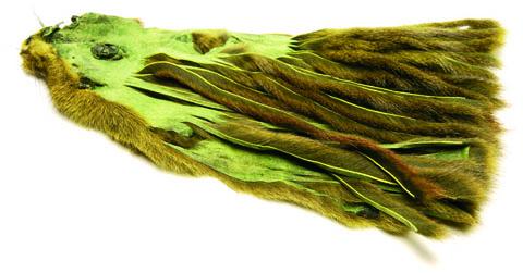 Micro Zonker Pine Squirrel Skin