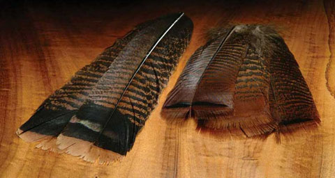 Turkey - Cinnamon Tip Tails from Wapsi