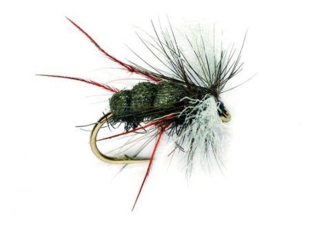 Aero Red Leg Hawthorne #12