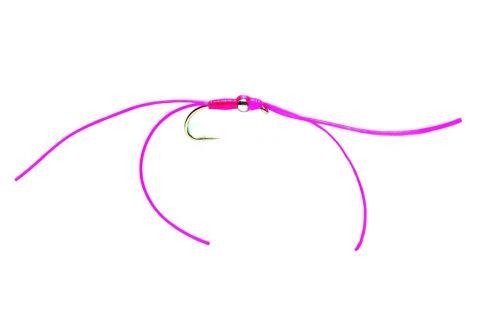 Bloodworm - Pinkie #10