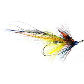 Blue Gunn Patriot Salmon Double #8