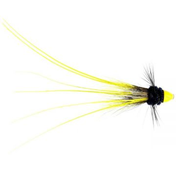 "Cinders Shrimp Feeler Conehead 0.25"""