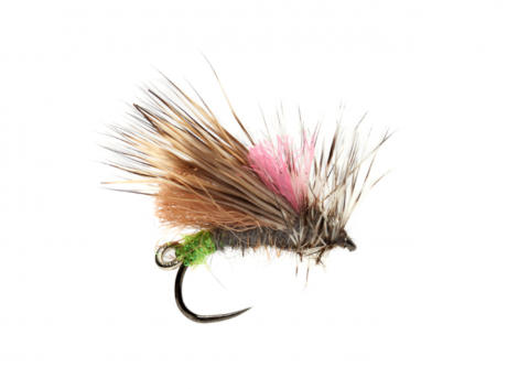 Duo Caddis #12 or #14 - Barbless