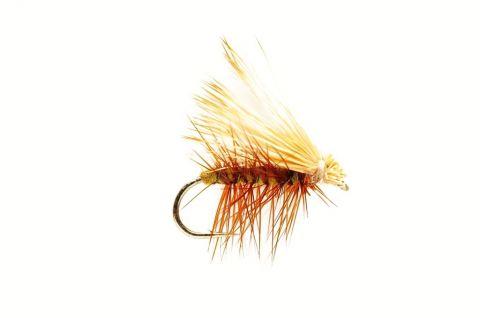 Elk Wing Caddis Olive #12