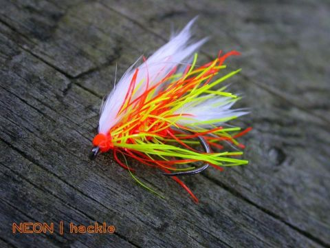 Flybox Neon Hackle