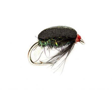 Fulling Mill Coch Y Bonddu Beetle #12