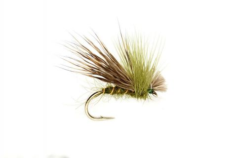 Hare's Ear & Green Drop Sedge #12