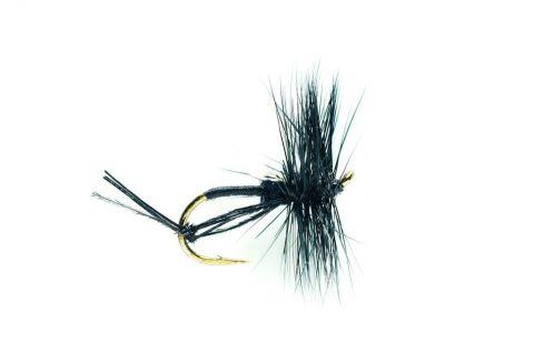 Hawthorne Fly #12