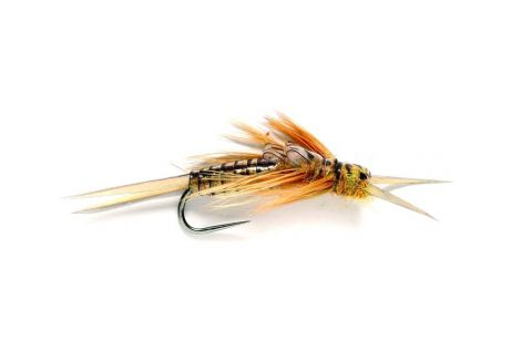 Oliver Edwards Golden Stonefly - Barbless #8