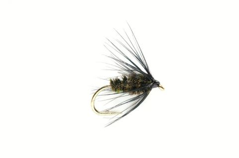 Wet Fly - Black & Peacock Spider #12