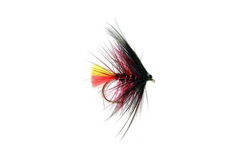 Wet Fly - Clan Chief #12