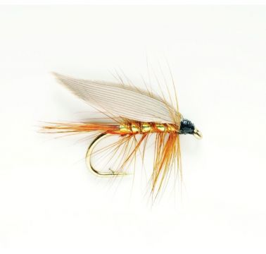 Wet Fly - Winged Whickhams Fancy #12