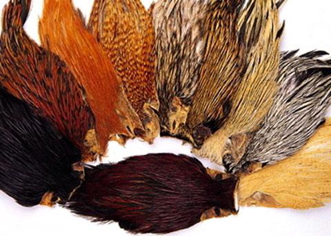Indian Cock Cape - Wapsi