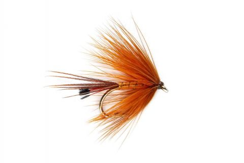 Galway Copper #10