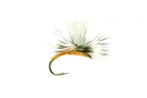 Sulphur Emerger #16