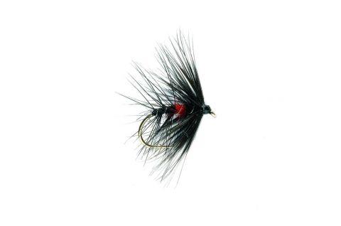 Wet Fly - Bibio #10 (Caledonia)