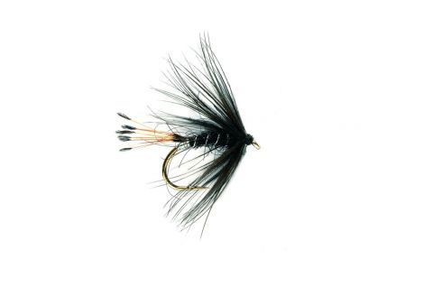 Wet Fly - Black Pennell #12