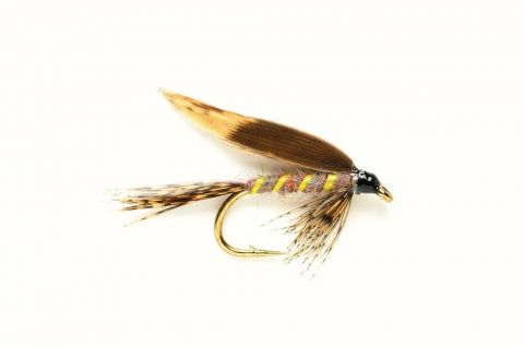 Wet Fly - Winged March Brown #12