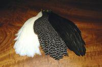 Metz Genetic Hen Neck Capes